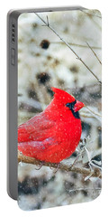 Cardinal Bird Christmas Card Portable Battery Charger by Peggy Franz