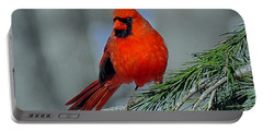 Cardinal In An Evergreen Portable Battery Charger