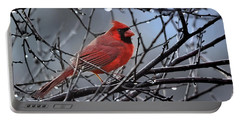 Cardinal In The Rain   Portable Battery Charger by Nava Thompson