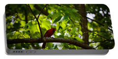 Cardinal In The Trees Portable Battery Charger