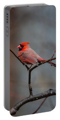 Cardinal Sing Portable Battery Charger