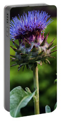 Cardoon Portable Battery Charger by Chris Flees