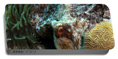 Caribbean Reef Octopus Next To Green Anemone Portable Battery Charger