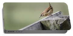 Carolina Wren Two Portable Battery Charger by Heather Applegate