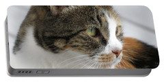 Portable Battery Charger featuring the photograph Cat by Laurel Powell