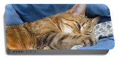 Portable Battery Charger featuring the photograph Cat Nap by Lingfai Leung