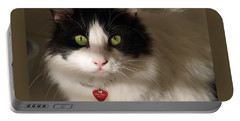 Portable Battery Charger featuring the photograph Cat's Eye by Karen Zuk Rosenblatt