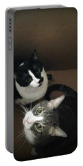 Cats In The Box Portable Battery Charger