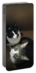 Tabby Cat Kitten Photography Pets  Portable Battery Charger