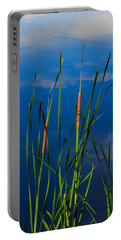 Cattails At Overholster Portable Battery Charger by Doug Long