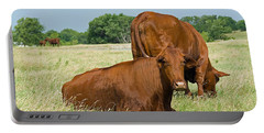 Portable Battery Charger featuring the photograph Cattle Grazing In Field by Charles Beeler
