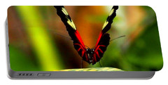 Portable Battery Charger featuring the photograph Cattleheart Butterfly  by Amy McDaniel