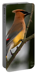 Cedar Wax Wing II Portable Battery Charger by Roger Becker