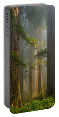 Center Of Forest Portable Battery Charger