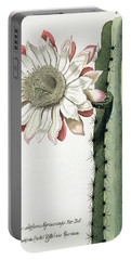 Cereus Erectus Altissimus Syrinamensis Portable Battery Charger