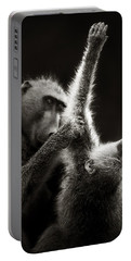Chacma Baboons Grooming Portable Battery Charger