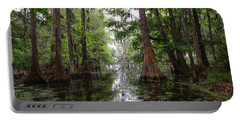 Charleston Swamp Portable Battery Charger