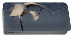 Checking For Leaks - Reddish Egret - White Form Portable Battery Charger