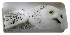 Cheeky Snow Owl Portable Battery Charger