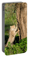 Cheetah Cub Acinonyx Jubatus Climbing Portable Battery Charger