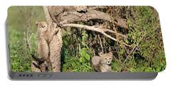 Cheetah Cubs Acinonyx Jubatus Climbing Portable Battery Charger