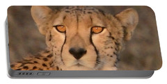 Cheetah Gaze At Sunset Portable Battery Charger