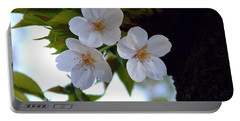 Portable Battery Charger featuring the photograph Cherry Blossom by Andrea Anderegg