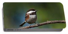 Chestnut Backed Chickadee Perched On A Branch Portable Battery Charger