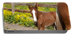 Chestnut Foal Portable Battery Charger