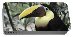 Portable Battery Charger featuring the photograph Chestnut-mandibled Toucan by Teresa Zieba
