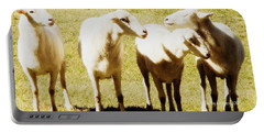 Portable Battery Charger featuring the photograph Cheviot Sheep by Kathy Barney