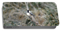 Portable Battery Charger featuring the photograph Chickadee In Cedar by Brenda Brown