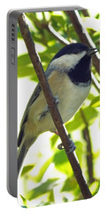 Chickadee Singing Portable Battery Charger