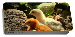 Portable Battery Charger featuring the photograph Cute Chicks by Salman Ravish
