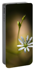 Chickweed Blossom And Bud Portable Battery Charger by Marty Saccone