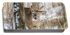 Portable Battery Charger featuring the photograph Childish Buck by Steven Santamour