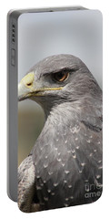 Chilean Eagle Portable Battery Charger