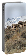 Chimney Rock Rams Portable Battery Charger
