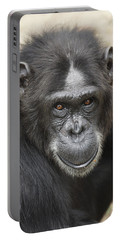 Chimpanzee Portrait Ol Pejeta Portable Battery Charger