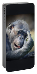Portable Battery Charger featuring the photograph Chimpanzee Thinking by Savannah Gibbs