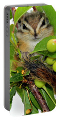 Portable Battery Charger featuring the photograph Chip Or Dale by Barbara Chichester