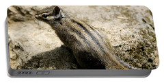 Chipmunk On A Rock Portable Battery Charger by Belinda Greb