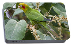 Chiriqui Conure 2 Portable Battery Charger by Heiko Koehrer-Wagner
