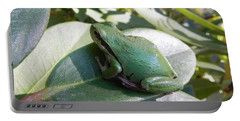 Chorus Frog On A Rhodo Portable Battery Charger