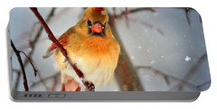 Northern Cardinal Snow Scene Portable Battery Charger by Nava Thompson