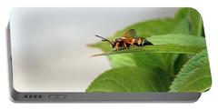 Cicada Killer Portable Battery Charger