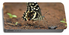 Citrus Butterfly Puddling Jozani Portable Battery Charger