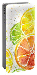 Citrus Fruit Watercolor Portable Battery Charger