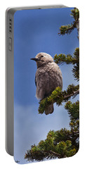 Clark's Nutcracker In A Fir Tree Portable Battery Charger
