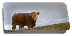 Cliffs Of Moher Brown Cow Portable Battery Charger